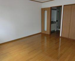 シンコーハイツ/102号室