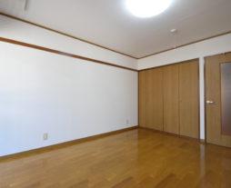 シンコーハイツ/101号室